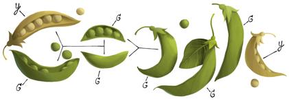 Logo Google Mendel